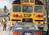CAR RAMS SCHOOL BUS :