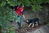 DOG RESCUED FROM LEDGE - Photos by: BRIAN WOODS :